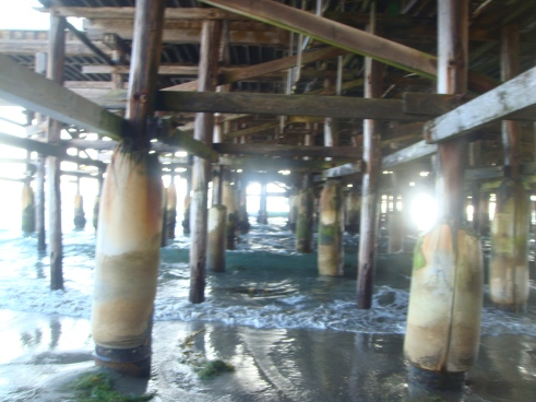 Beneath Pacific Pier