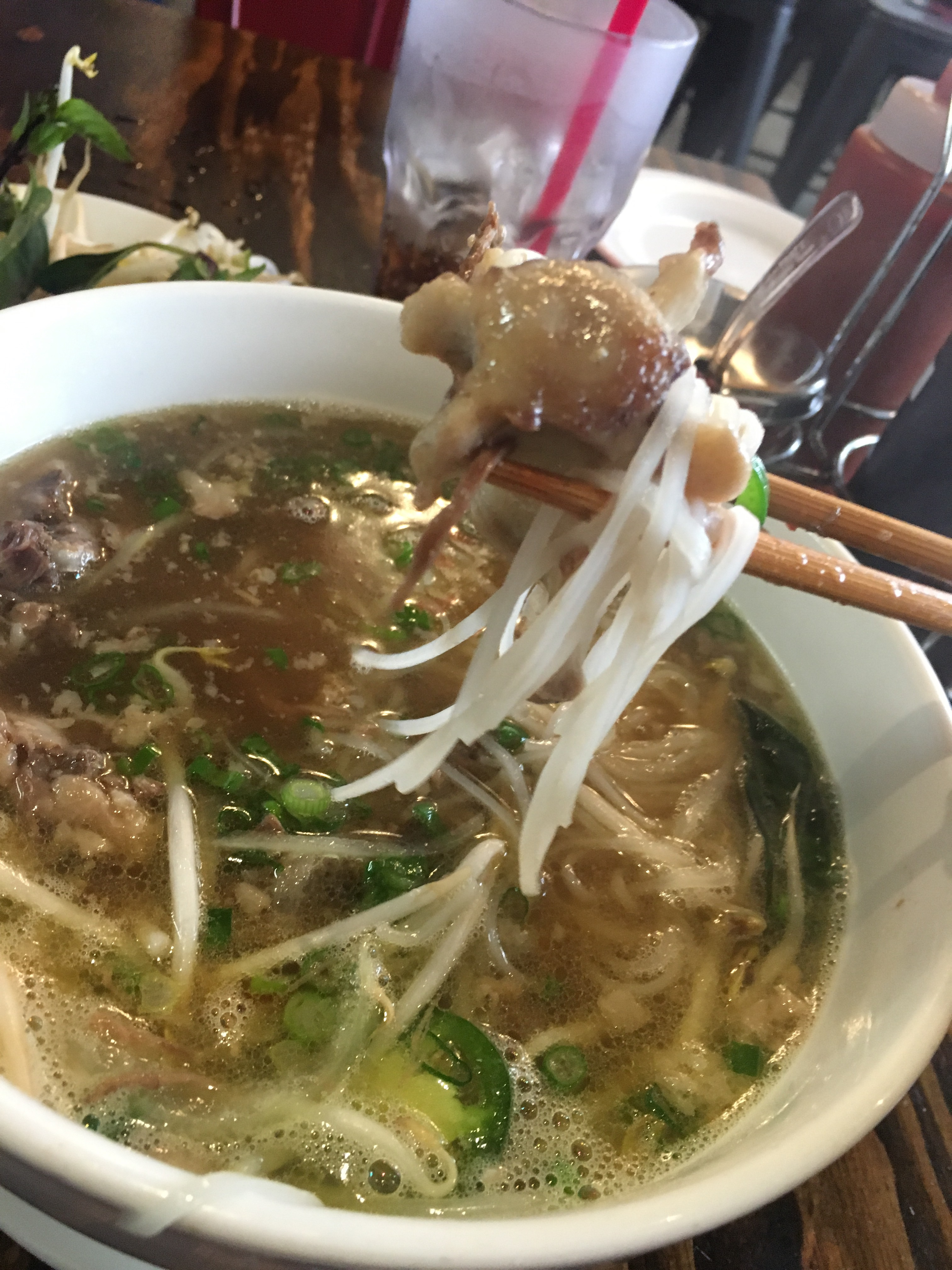 Oxtail Pho @Feu Pho Kitchen Studio City   notoriouslysinglegirl